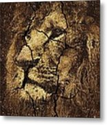 Lion -wall Art Metal Print