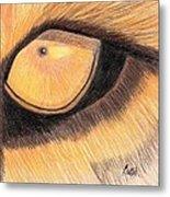 Lions Eye Metal Print by Bav Patel