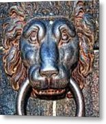 Lions Head Knocker Metal Print