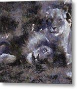 Lions Photo Art 02 Metal Print