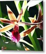 Lit Up Orchid Metal Print