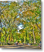 Literary Walk In Central Park Metal Print