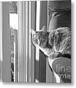 Little Big World Metal Print