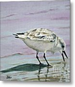 Little Bird On The Beach Metal Print