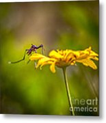 Little Biter Metal Print by Marvin Spates