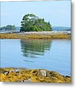 Little French Island In Maine Metal Print