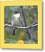 Little Lady Eastern Kingbird 4 Metal Print