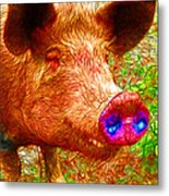 Little Miss Piggy - 2013-0108 Metal Print by Wingsdomain Art and Photography