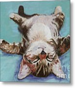 Little Napper  Metal Print