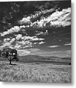 Little Prarie Big Sky - Black And White Metal Print