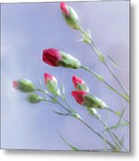 Little Red Carnations In The Sun Metal Print