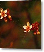 Little Red Flowers Metal Print