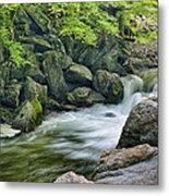 Little River Scenery E226 Metal Print