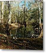 Little Withlacoochee River Metal Print