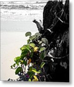 Live And Dead Metal Print