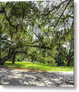 Live Oaks Dripping With Spanish Moss Metal Print