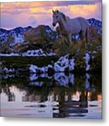 Live The Dream  Metal Print by Jeanne  Bencich-Nations