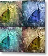 Lives Of A Butterfly Metal Print