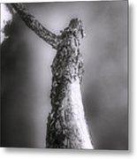 Living Dead Tree - Spooky - Eerie Metal Print
