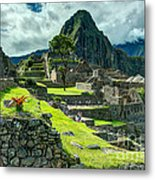 Living High Metal Print