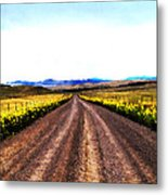 Living On Back Roads Metal Print
