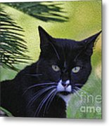 Living The Wild Life Metal Print