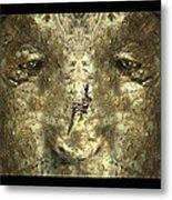 Lizard Head Metal Print