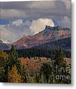 Lizard Head Wilderness Metal Print