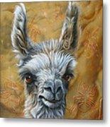 Llama Baby Metal Print by Jurek Zamoyski