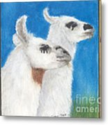Llamas Tracks Farm Ranch Animal Art Camelid Metal Print