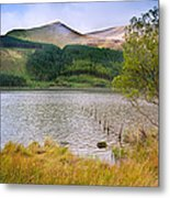 Llyn Cwellyn In Snowdonia National Park Towards M Metal Print