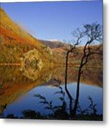 Llyn Gwynant Is A Lake In Snowdonia  Wales Metal Print