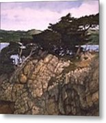 Lobos Lookout Metal Print