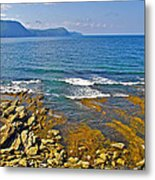Lobster Cove In Rocky Harbour-nl Metal Print