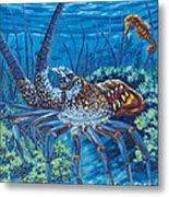 Lobster Season Metal Print