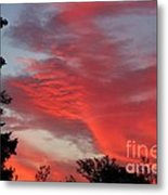 Lobster Sky Metal Print