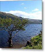 Loch Lomond Tree Metal Print
