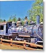 Loco In Death Valley Metal Print