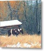 Log Cabin Pony Metal Print