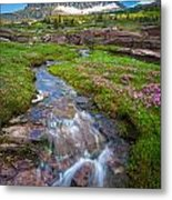 Logan Pass Creek Metal Print