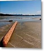 Logger Left Overs Metal Print
