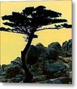 Lone Cypress Companion Metal Print
