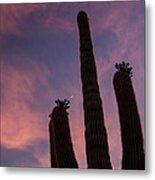 Lone Desert Giant Metal Print