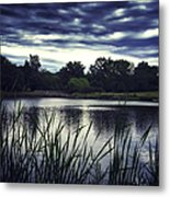 Lone Duck At Dusk Metal Print