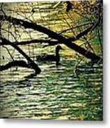 Lone Duck Metal Print