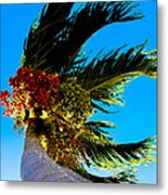 Lone Palm Metal Print by Lisa Cortez