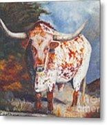 Lone Star Longhorn Metal Print