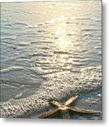 Lone Star On Lovers Key Beach Metal Print by Olivia Novak