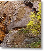 Zion Lone Tree Metal Print