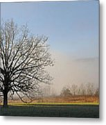 Lone Tree In Cades Cove Metal Print